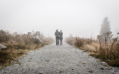 Struggling? Come Walk With Me, Says Jesus