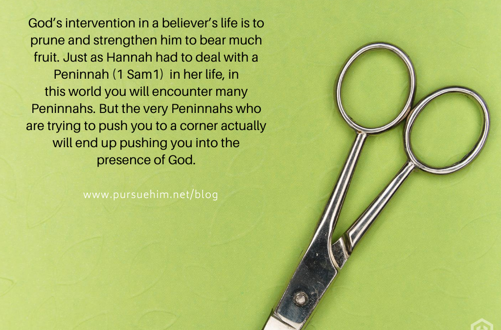 Hannah. Barrenness. And 3 Lessons for You! (Part 2)